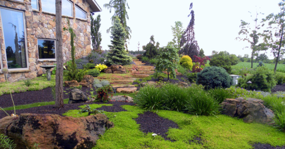Landscaping trees landscaping network calimesa ca for Landscaping rocks new plymouth